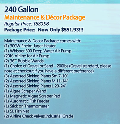 240 Gallon Maintenance and Décor Package