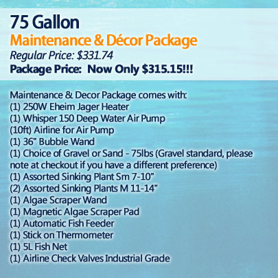 75 Gallon Maintenance and Décor Package