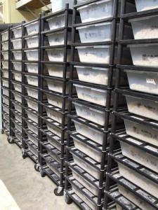 boa snake racks