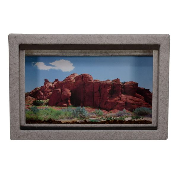 Vision Cage Model 111 - Classic Gray - Desert Rock Formations Background